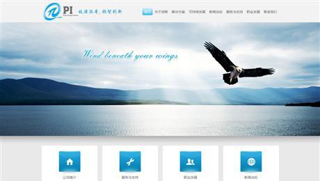 上海派新网站建设